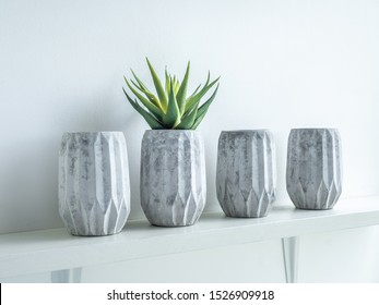 Concrete pots minimal style. Green succulent plant in modern geometric concrete planters on wooden shelf isolated on white background.