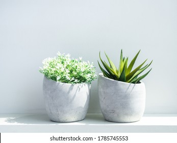 Concrete pots. Modern geometric cement planters with white flowers and green succulent plant on white wood shelf on white background.