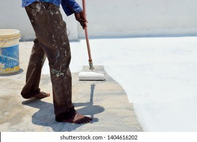 Imágenes, fotos de stock y vectores sobre White Roof