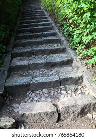Concrete stairs in the jungle nature outdoor