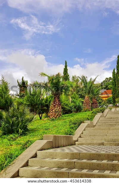 Concrete Tiled Upward Staircase In Ornamental Tropical Garden. Summer Landscape, Cloudy Weather. Vertical Image. No People. Modern Landscape Design. Yellow Villa In The Background.