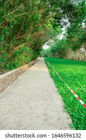 Concrete Walkway path with green grass and trees.