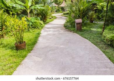 Concrete walkway in tropical garden, Thailand