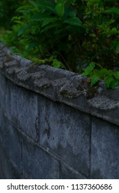The concrete wall of a house