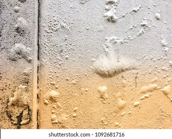 Concrete wall paint stripping the blister from water permeable inside.