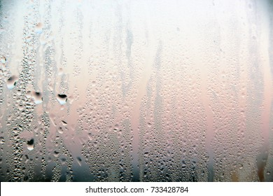 Condensate on the glass of the window