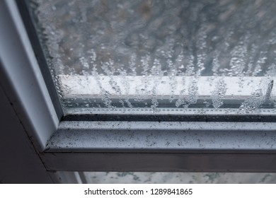 Condensation droplets on a window pane.