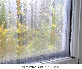 Condensation on Window glass on the inside