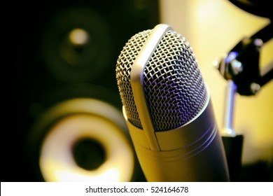 Condenser microphone. Musical speaker