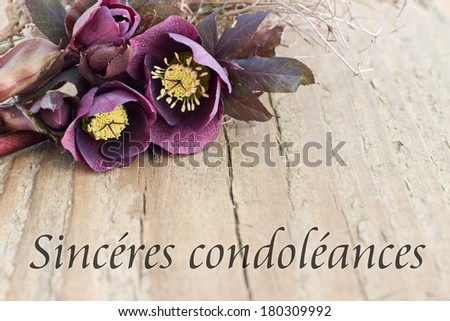 condolence card with dark christrosesdeepest sympathyfrench - Deepest Sympathy Card