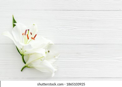 Condolence card with white flowers lily. Funeral symbol