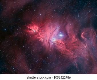 Der Kronennebel ist eine dunkle Wolke in Verbindung mit einer H-II-Region, die ebenfalls in NGC 2264 eingebettet ist und den Kronennebel zu einem Teil des Nebel um den Weihnachtsbaum-Cluster macht.