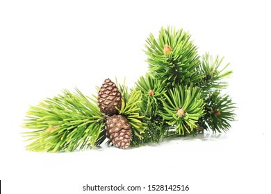 Cones isolated on white background