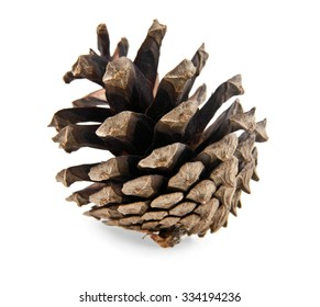 cones isolated on a white background