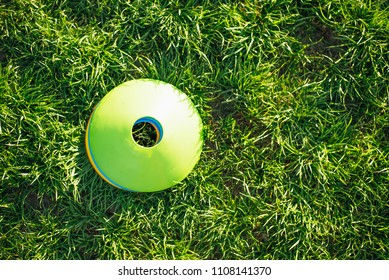 cones on the grass