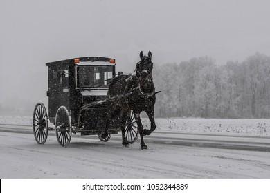 Conestogo, Ontario/ Canada - December 23, 2017:Amish with horse and buggy in rural Ontario in winter