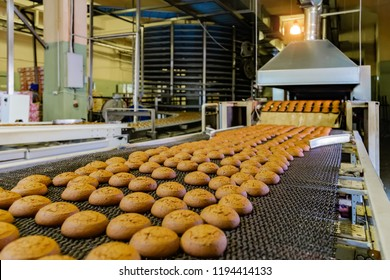 Confectionery factory. Production line of baking cookies, selective focus.