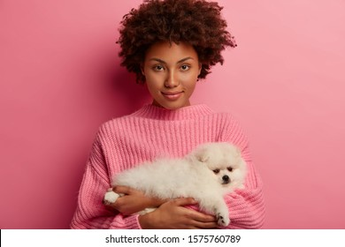 Confident African American woman holds small dog, come to vet to get advice how to feed Pomerian spitz, looks directly at camera, poses against pink background. Pet care, animals, people concept