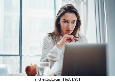 Confident business female using mobile laptop for looking a new business solution during work process at office.Blurred background