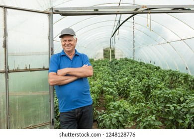 Confident senior man standing in front of greenhouse and smiling at camera.