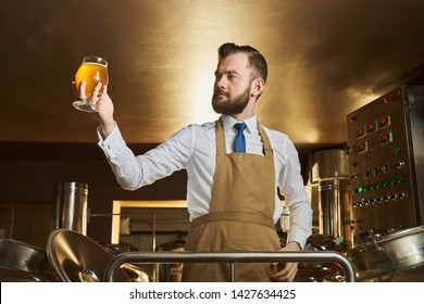 Confident specialist in brown apron holding and looking at beer glass. Brewery expert controlling quality of beer. Adult bearded man standing near equipment.