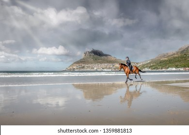 Confident teenage girl cantering on the back of a brown colored horse with black main and tail at the beach under a stormy cloud sky