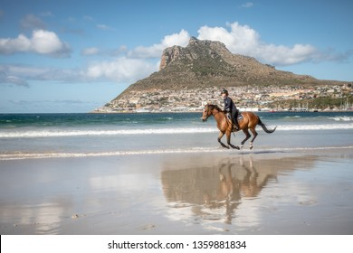 Confident teenage girl cantering on the back of a brown colored horse with black main and tail at the beach under a cloudy sky with mountains in the background