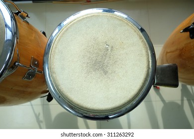 congas the percussion drum camp
