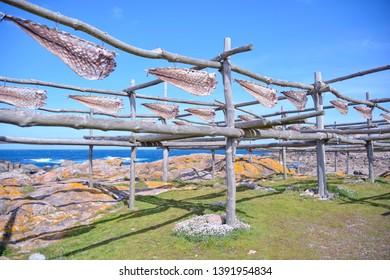 Imágenes, fotos de stock y vectores sobre Galicia Eastern