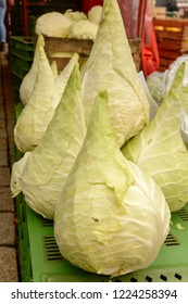 conic white cabbages heap on sale at Saturday market, shot in bright cloudy light at Ludwigsburg, Germany