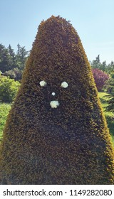 conical shaped pine tree with flower decoration as a human face