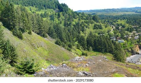 Conifer forests on coastal mountains along the Oregon coast