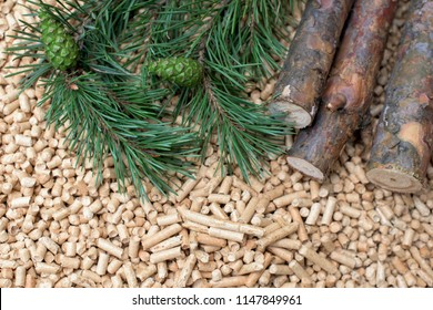 Coniferous biomass - conch, fir, pine, wood, biomass - renewable energy