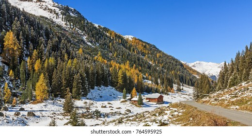 Coniferous mountain forest with spruces and larches on mountain slope in the Dischma valley in the swiss Alps. Autumn landscape with snow near Davos, Switzerland. With copy space.
