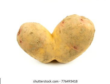Conjoined Siamese potato on a white background with copy space. Potential use as wonky / funny / ugly vegetable or food waste concept.