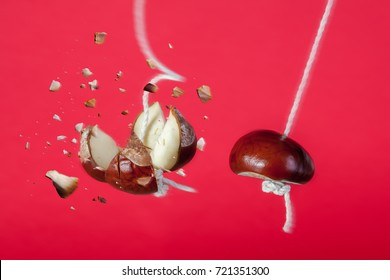 Conker exploding on a string. Smash the competition business concept with a strong conker on string smashing another conker on a string. Metaphor for business strength and power.