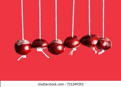 Conkers on strings hanging next to each other with a red background like a newtons cradle