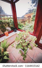 conservatory interior house