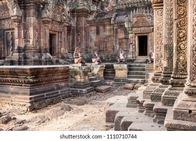 Considered by many to be the jewel in the crown of Angkorian art, Banteay Srei is cut from stone of a pinkish hue and includes some of the finest stone carving - Banteay Srei, Siem Reap, Cambodia