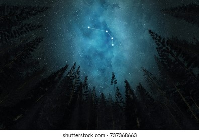 Constellation Aries. Night sky. Stars. Night in the forest.