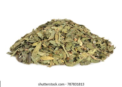 Constipation and laxative herb mixture used in alternative herbal medicine with senna leaf, fennel, elder and lime flowers on white background.