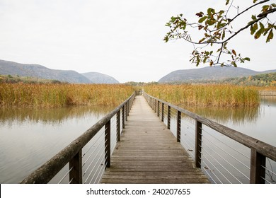 Constitution Marsh is a 270 acre wildlife sanctuary on the east coast of the Hudson River.