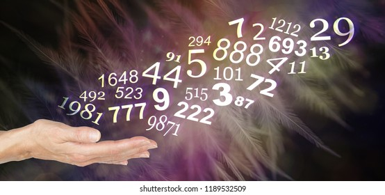 Consult a Numerologist and learn about your personal NUMBERS - female open palm with a stream of random numbers flowing upwards on a warm dark feather background