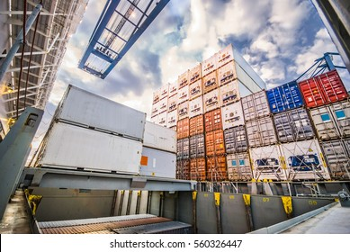 Container Cargo Transfer Operation