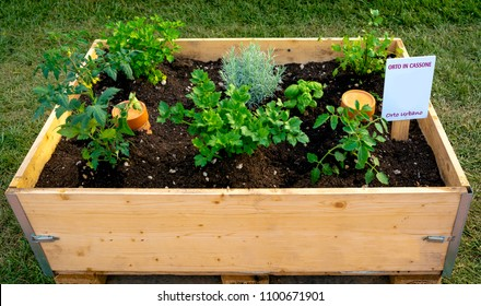 "Container to make a vegetable garden on your balcony or terrace. On the label are shown the following captions: ""vegetable garden in the box"" ""urban vegetable garden"""
