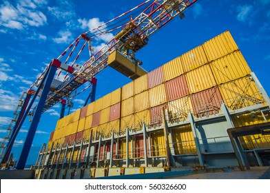container operation in port of Rotterdam Europort
