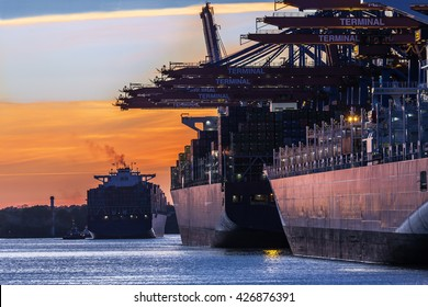 Container Port of Hamburg in the light of the setting sun; Northern Germany
