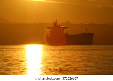 Container ship sunrise with birds (close up)
