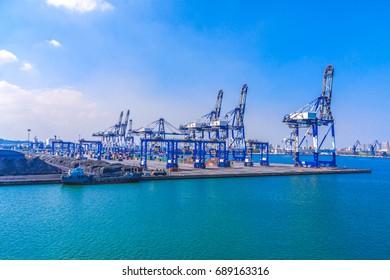 Container terminal and bulk cargo terminal