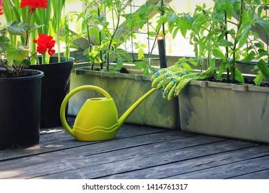 Vegetable+garden+apartment Images, Stock Photos & Vectors ...